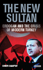 Book Cover - The New Sultan